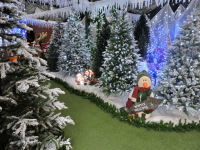 Christmas at Toad Hall Garden Centre